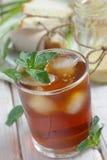 A hortelã congelou o chá Fotografia de Stock