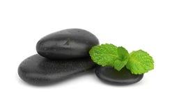 Hortelã fresca nas pedras do preto com gotas Fotografia de Stock Royalty Free