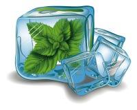 Hortelã no cubo de gelo Imagens de Stock