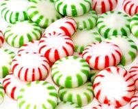 Hortelã verdes e vermelhas Fotos de Stock