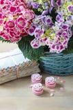 Hortensi macrophylla (hortensia kwiat) Obrazy Royalty Free