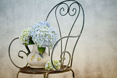 Hortensia Flowers. Still Life with Hortensia Flowers in old vase on retro Chair Royalty Free Stock Photos