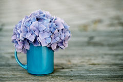 Hortensia Flowers Royalty Free Stock Photo