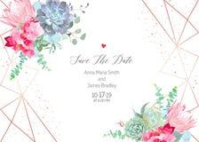 Hortensia rosada, protea, succulent azul del echeveria, eucalipto, GR libre illustration