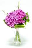 Hortensia rosado en un florero Imágenes de archivo libres de regalías