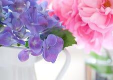 Hortensia y pétalos color de rosa Foto de archivo