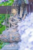 Hortensie und budda Statue stockfoto