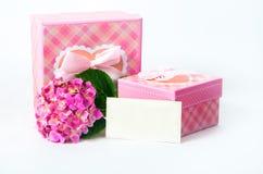 Hortensieblume und -Geschenkbox stockfotografie