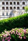 Hortensiebusch und Fassade von Chateau de Blois Stockbilder