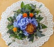 hortensje Zdjęcie Royalty Free