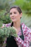 Horticulteur féminin au travail rêvassant photo libre de droits