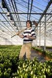 Horticultura Fotos de Stock