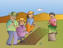 Horticultura Imagens de Stock