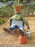 Horticultura do ornamento do indivíduo do jardim Imagem de Stock