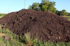 Horticultural compost Royalty Free Stock Photos