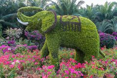 Horticultural works of lianhuashan park in shenzhen: elephants royalty free stock photography