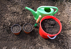 Horticulture accessories on the gardenbed Stock Photos