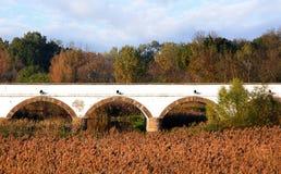 Hortobagy negen-gat brug van Hongarije stock foto