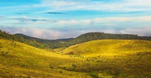 Horton Plains images libres de droits