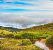 The Horton Plains Royalty Free Stock Photo