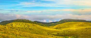 The Horton Plains Stock Image