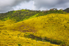 The Horton Plains Stock Photos