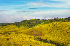 The Horton Plains Stock Photography