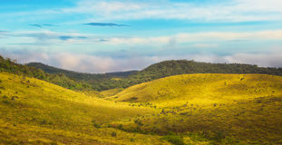 The Horton Plains Royalty Free Stock Images