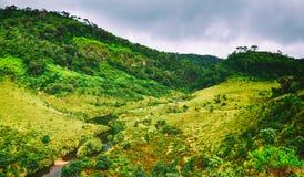 Horton Plains Bello paesaggio Panorama della Sri Lanka Fotografia Stock Libera da Diritti