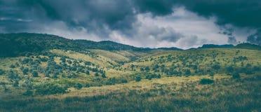 Horton Plains härlig liggandepanorama Royaltyfri Foto