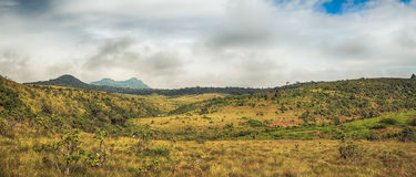 The Horton Plains Royalty Free Stock Photos