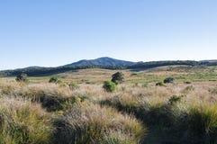 Horton Plains National Park Fotografia Stock Libera da Diritti