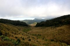 Horton Plains National Park i morgonen Arkivbild