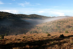 Horton Plains National Park in the morning Royalty Free Stock Photo