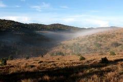 Horton Plains National Park pendant le matin Photo libre de droits