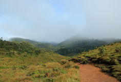 Horton Plains Stock Image