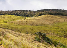Horton Plains National Park. Sri Lanka Royalty Free Stock Photo