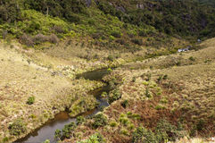 Horton Plains National Park. Sri Lanka Royalty Free Stock Photos