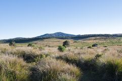 Horton Plains National Park Royalty Free Stock Photo