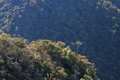 Horton Plains National Park Royalty Free Stock Photography