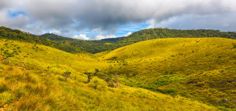 Horton Plains Panorama photos libres de droits