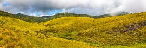 The Horton Plains. Panorama Stock Image