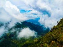 Horton Plains Sri Lanka - bewölkter Tag Stockbild