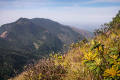 Horton Plains World's End. In Sri Lanka Royalty Free Stock Photography