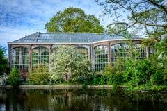 Hortus Botanicus, Amsterdam Fotografia Stock
