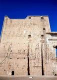 Horus,埃德富寺庙  库存照片
