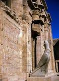 Horus,埃德富寺庙  库存图片
