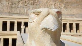 Horus - μέτωπο γερακιών του ναού Hatshepsut, Thebes, Αίγυπτος Στοκ Εικόνες