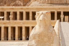 horus Висок Hatshepsut Египет luxor стоковые фото