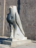 Horus. Statue of Horus, Edfu Temple, Egypt stock images